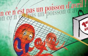 Stop aux expulsions !